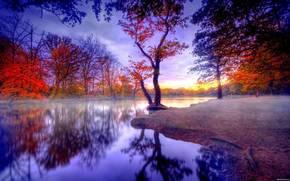 autunno, acqua, alberi, paesaggio