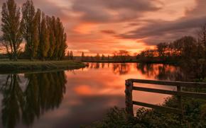 rivire, coucher du soleil, arbres, paysage
