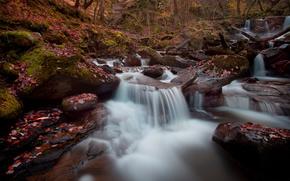 река, каскад, осень, лес, камни