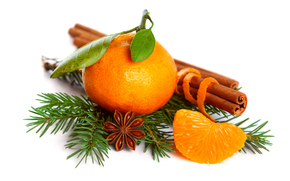 mandarin, citrice, molid, ramur, scorioar, anason, anason stelat, vacan, Anul Nou, Crciun