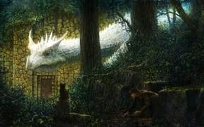 艺术, 幻想, 女孩, 龙, 白, 猫, 森林, 树墩, 背面, 石