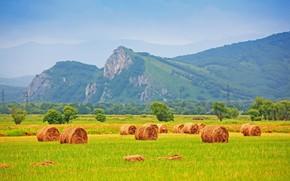 поле, сено, стог, солома, трава, деревья, горы, природа