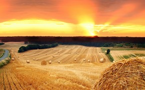 поле, солнце, закат, сено, стог, солома, дорога, деревья, природа