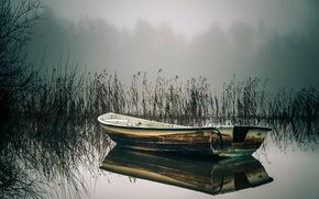 lake, boat, cane