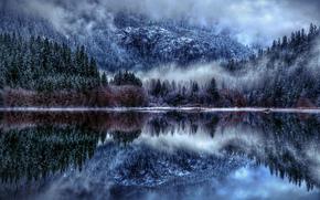 природа, зима, озеро, снег, туман