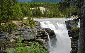 водопад, скалы, деревья