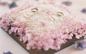 Ftes, oreiller, Anneau, rose, mariage, Engagement, fond, papier peint