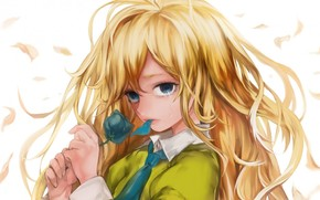 girl, rose, tear, tie