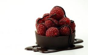 white, background, raspberry, chocolate, Berries, macro