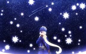 арт, мальчик, аниме, пчелиная почта, небо, ночь, звезды