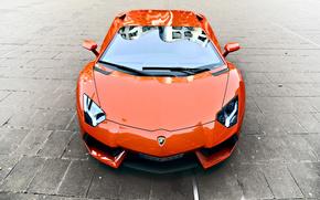 Lamborghini, Aventador, LP700-4, orange, Lamborghini, aventador, orange, rflexion, pav, voitures, Machinerie, Voiture