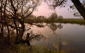 вечер, река, природа