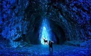 романтика апокалипсиса, арт, пещера, лед, холод, человек, оружие, олень