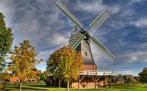 Zelzingen, Germany, town, mill, Trees, chestnuts