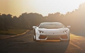 Lamborghini, aventador, blanc, avant, phares, route, coucher du soleil, Lamborghini