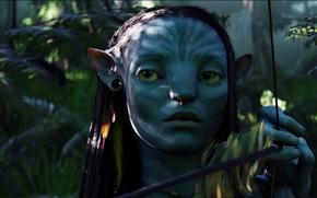 Movies, Avatar, fantasy, movie