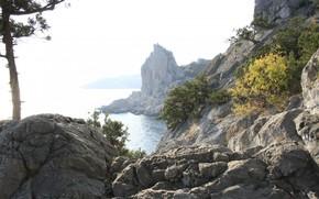 природа, крым, крыло лебедя, горы, море, отдых, путешествие, обои.
