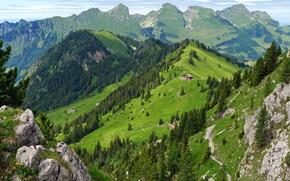 Svizzera, Montagne, Gastlosen, foresta, Svizzera