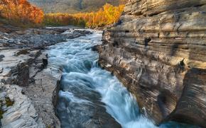 Abisko fiume, Abisko National Park, sweden, Svezia, fiume, rock, autunno