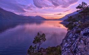 norway, Норвегия, фьорд, горы, деревья, сосны, закат