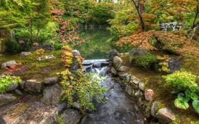 пруд, парк, камни, деревья