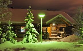 inverno, neve, luzes, rvores. Noite, Lapland, Finlndia