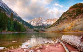lago marrone, lago, Montagne, alberi, paesaggio