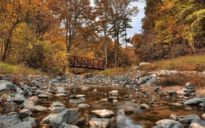 wilket creek park, canada, Канада, речка, лес, осень, мост, деревья, камни