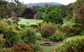 muckross house gardens, Ирландия, парк, сад