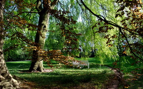 Гамбург, Парк, Штадт, деревья, лавка