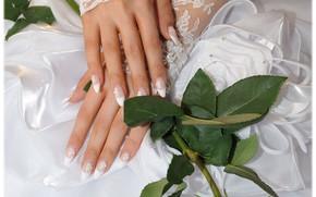 rosa, matrimonio, sposa, vestire