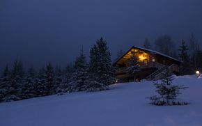 home, forest, snow, house in the woods, Winter, New Year, cottage, hut, Tree, cabin, wood, snow, new year, Trees