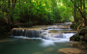 forest, Trees, waterfalls, river, greens