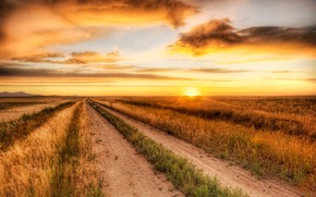 pr do sol, estrada, campo