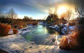 alba, lago, alberi, inverno
