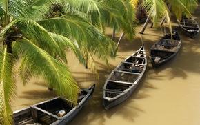 des tropiques, Bateaux, paume
