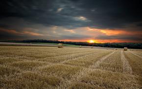поле, закат, пейзаж, жнивьё
