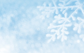 Los copos de nieve, copo de nieve, nieve