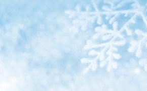 снежинки, снежинка, снег