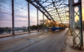 citt, ponte, tram