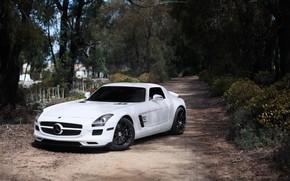 Mercedes Benz, SLS AMG, Color blanco, vista frontal, teido, discos negros, Los rboles, Mercedes