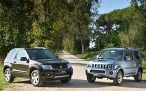 Suzuki, Grand Vitara, Dzhimni, jeep, crossover, front, road, Trees, background, suzuki