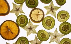 fruit, orange, lemon, kiwi, background, white
