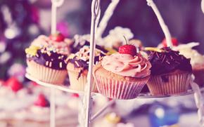 sweet, cake, cream, cake, chocolate, strawberry