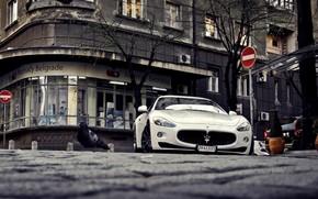 city, view, White, Sports, Maserati