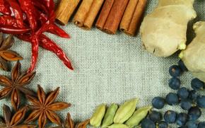cinnamon, paprika, star anise, ginger