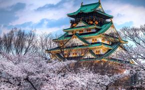 Небо, облака, пагода, вишня, сакура