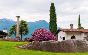 park, dom, drzew, kolumna, palma, cyprys. rododendron, krzak, Gry, kamienie, krajobraz