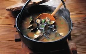 soup, boiler, Mussels