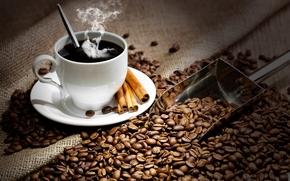 coffee, hot, drink, cup, saucer, spoon, cinnamon, grain, paddle